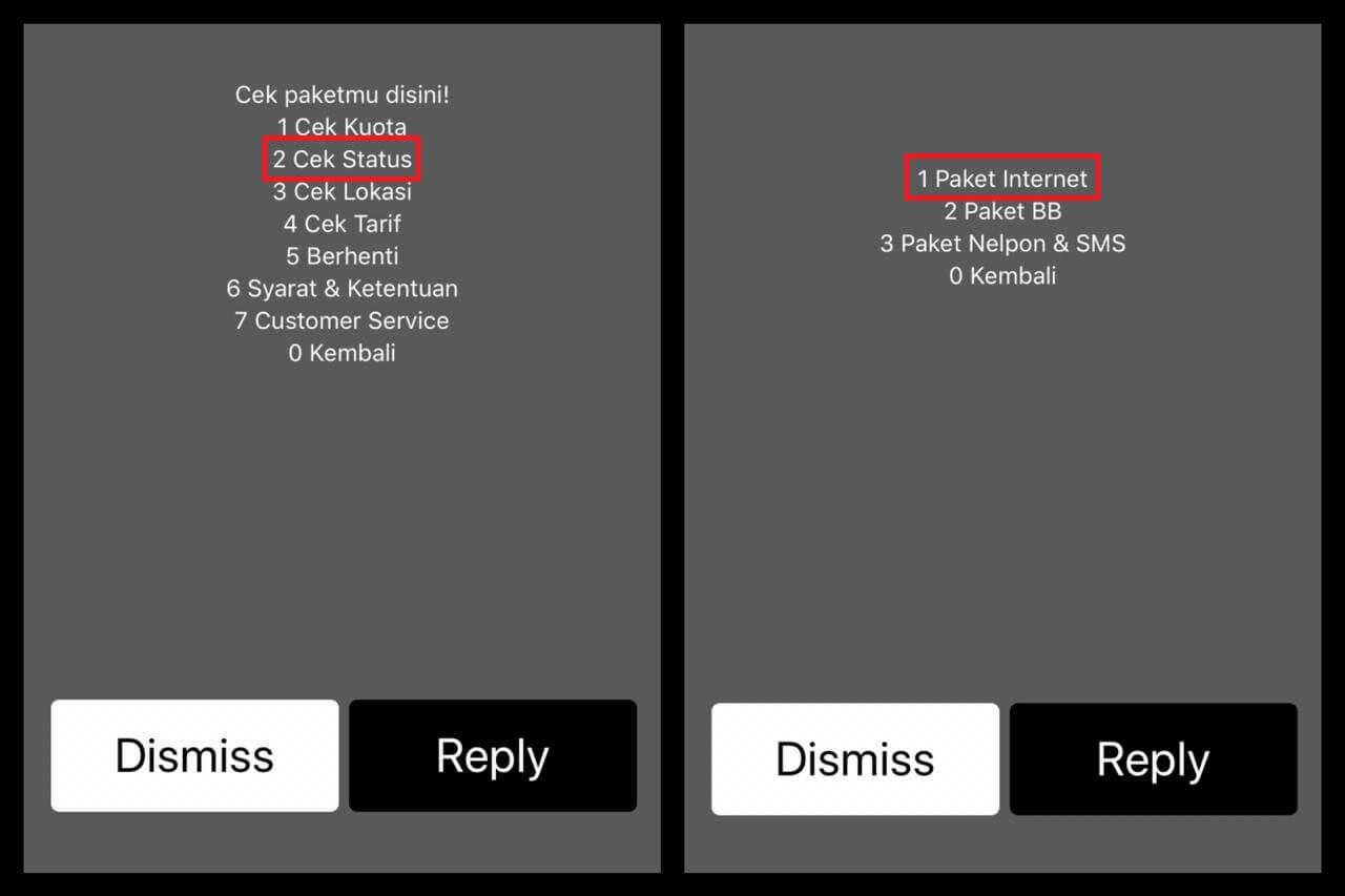 Pilih Cek Status lalu pilih 1 Paket Internet