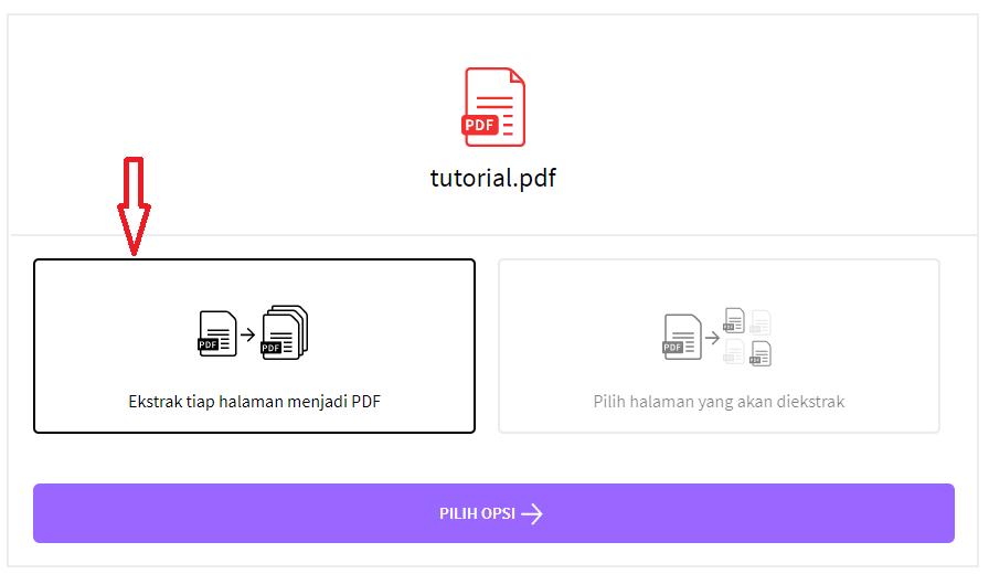 Ekstrak tiap halaman menjadi pdf